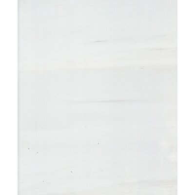 12 x 12 Dolomite Marble Tile in Polished White