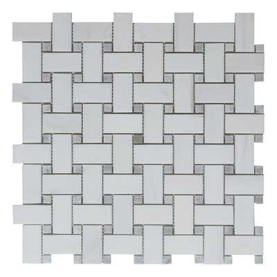 Dolomite Gray Dot Basket Weave Polished 12 x 12 Natural Stone Mosaic Tile in White