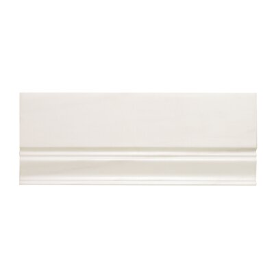 12 x 5 Dolomite Marble Cove Base Tile Trim in White