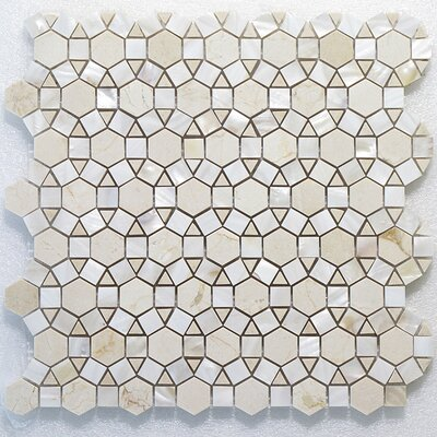Bloom Carrara and Shell Wall Polished 12 x 12 Natural Stone Mosaic Tile in White