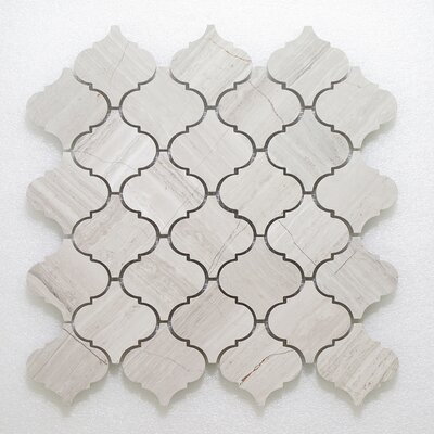 Casablanca Oyster Wall Mosaic Polished 12 x 12 Natural Stone Mosaic Tile in White/Gray