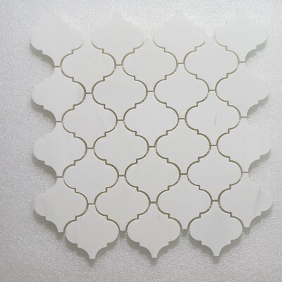 Casablanca Carrara Wall Polished 12 x 12 Natural Stone Mosaic Tile in White