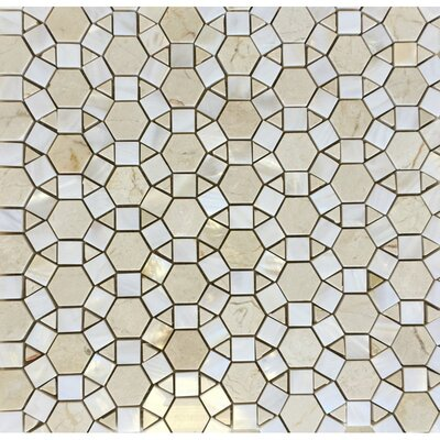 Sea Shell Mixed Pearl Wall Polished 12 x 12 Natural Stone Mosaic Tile in Yellow/White