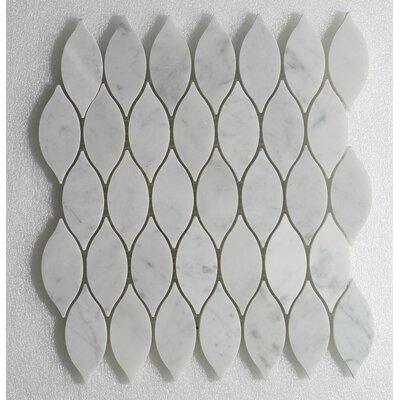 Elongated Tear Drop Carrara P. and Carrara H. Wall 12 x 10.8 Natural Stone Mosaic Tile in White
