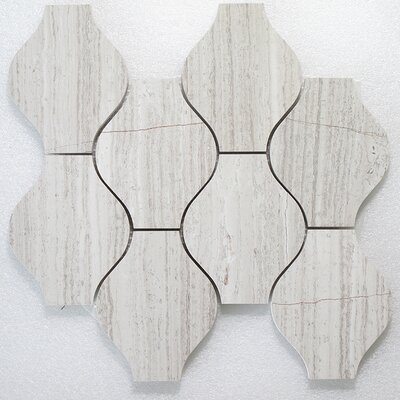 Lanterna Oyster P. Wall 12 x 12 Natural Stone Mosaic Tile in Gray