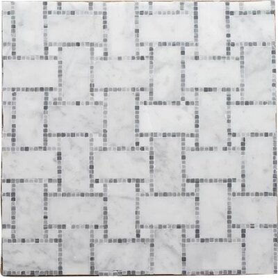 B.View Micro Mosaic Pure Carrara P Wall 12 x 12 Natural Stone Mosaic Tile in White