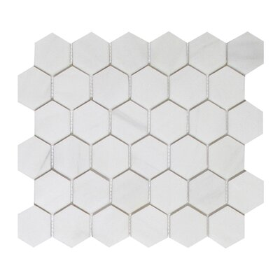 Soft Touch Hexagon 2 x 2 Marble Mosaic Tile in White