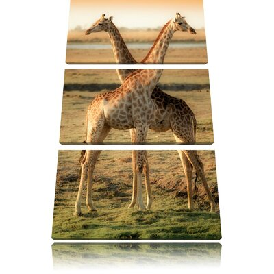 Pair of Giraffes 3-Piece Photographic Print on Canvas Set
