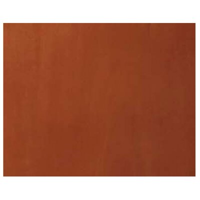 Adina Wall Mount Bridge Panel Finish: Cinnamon