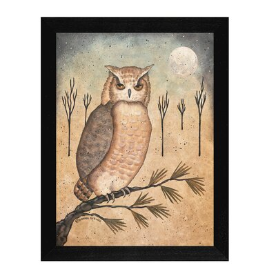 Hoot Owl Framed Graphic Art Print On Canvas DNA364-276