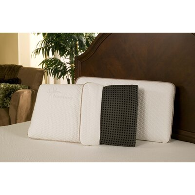 Ventilated Rayon from Bamboo Charcoal Memory Foam Pillow Size: Queen