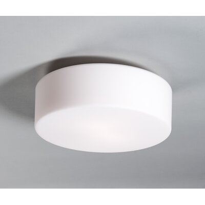 Tango Ceiling Fixture Wall Sconce Bulb Type: Incandescent, Size: 12 H x 12 W x 5 D