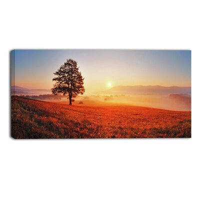 Tree and Sun Landscape Photographic Print on Wrapped Canvas PT6472-32-16