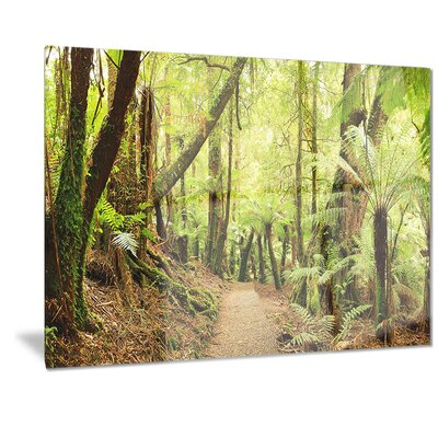 Metal 'Rainforest Panorama' Photographic Print MT7141-28-12