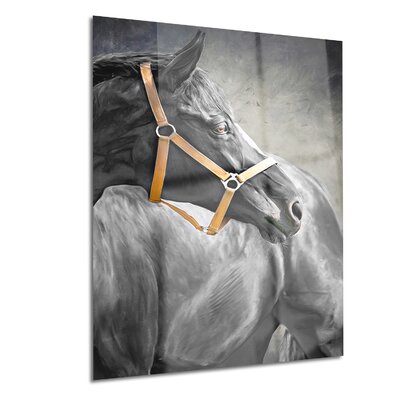 Metal 'Black Horse' Painting Print Size: 12
