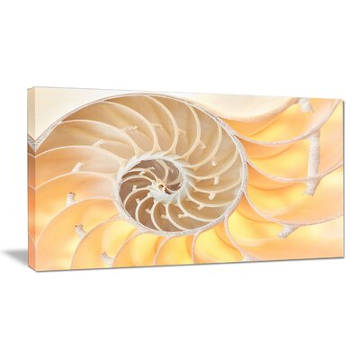 "'Golden Nautilus Shell Pattern' Graphic Art on Wrapped Canvas Size: 28"" H x 60"" W x 1.5"" D PT9240-60-28"