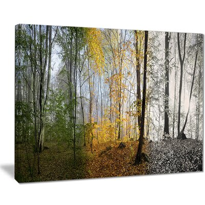 'Forest in Early Morning' Photographic Print on Wrapped Canvas PT8160-40-30