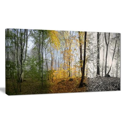 'Forest in Early Morning' Photographic Print on Wrapped Canvas PT8160-60-28
