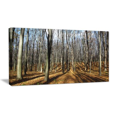 'Shade from Sun in Autumn Forest' Photographic Print on Wrapped Canvas PT13945-20-12