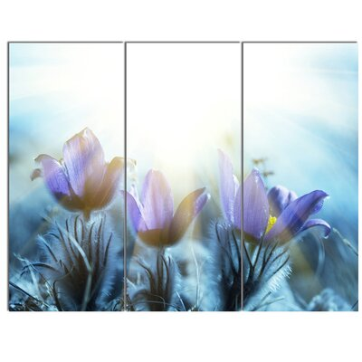 'Blooming Blue Spring Flowers' 3 Piece Photographic Print on Canvas Set MT12839-3P