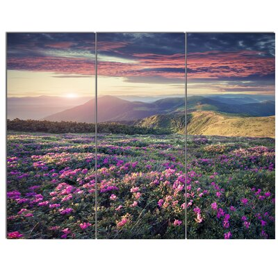 'Blossom Carpet of Pink Rhododendron' 3 Piece Photographic Print on Canvas Set MT14606-3P
