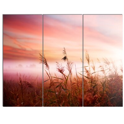 'Foggy Land with Early Morning Mist' 3 Piece Photographic Print on Wrapped Canvas Set PT14866-3P