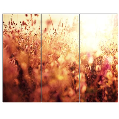 'Brown Shade Flowers in Sunshine' 3 Piece Photographic Print on Wrapped Canvas Set PT12499-3P