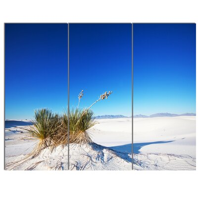 'White Sands Park in Usa' 3 Piece Photographic Print on Wrapped Canvas Set PT12672-3P