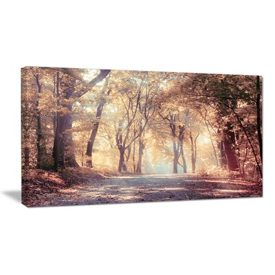 "'Golden Autumn Beautiful Forest' Photographic Print on Wrapped Canvas Size: 28"" H x 60"" W x 1.5"" D PT14867-60-28"