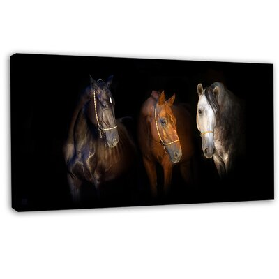 "'Three Horses with Golden Bridle' Graphic Art on Wrapped Canvas Size: 28"" H x 60"" W PT13150-60-28"