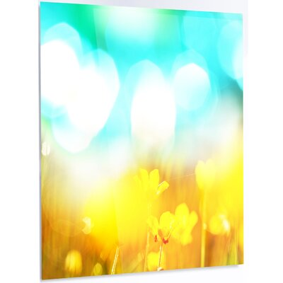 'Yellow Flowers on Blue Background' Graphic Art on Metal MT12482-30-48