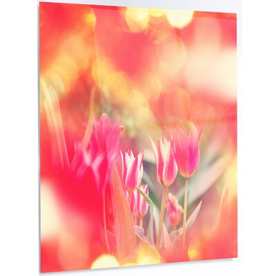 'Tulips on Abstract Red Background' Photographic Print on Metal MT12467-12-28