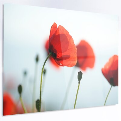 'Poppies on Background of Sea' Photographic Print on Metal MT14712-28-12