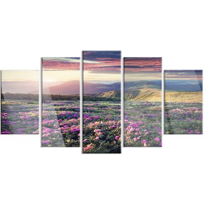 'Blossom Carpet of Pink Rhododendron' 5 Piece Photographic Print on Canvas Set MT14606-373