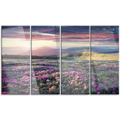 'Blossom Carpet of Pink Rhododendron' 4 Piece Photographic Print on Canvas Set MT14606-271