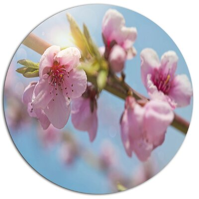 'Stem of Peach Blossom Flowers' Photographic Print on Metal MT14191-C11