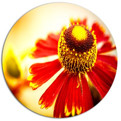 'Beautiful Flower on Yellow Background' Photographic Print on Metal MT13843-C11