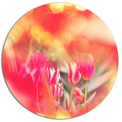 'Tulips on Abstract Red Background' Photographic Print on Metal MT12467-C11