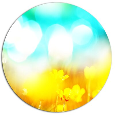 'Yellow Flowers on Blue Background' Photographic Print on Metal MT12482-C11