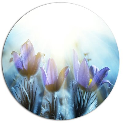 "Blooming Blue Spring Flowers"" Photographic Print on Metal MT12839-C38"