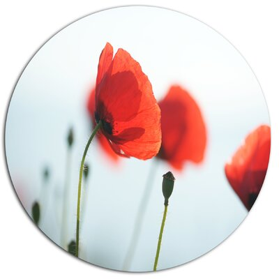 'Poppies on Background of Sea' Photographic Print on Metal MT14712-C11