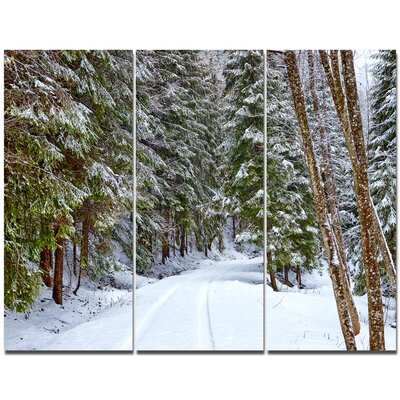 'Snowy Road in the Forest' Photographic Print Multi-Piece Image on Canvas PT15159-3P