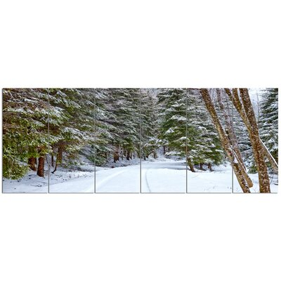 'Snowy Road in the Forest'  6 Piece Photographic Print Set on Canvas PT15159-628