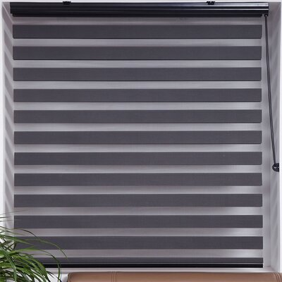 Zebra Semi-Sheer Roller Shade Size: 24 W x 78 L, Finish: Dark Gray