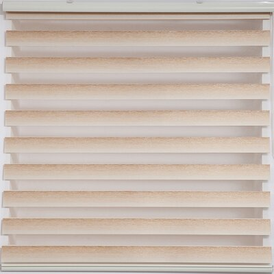 Zebra Blackout Striped Roller Shade Size: 30 W x 78 L, Finish: Beige