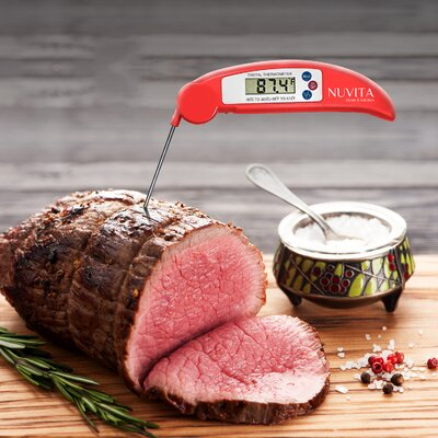 Instant Read Digital Thermometer Color: Red THERMOMETER-STICK-RD
