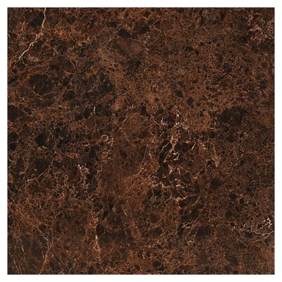 Dark Emperador Polished 23.4 x 23.4 Porcelain Field Tile in Brown