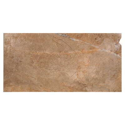 Natura Polished 23.4 x 46.8 Porcelain Field Tile in Gray