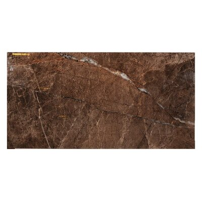 Natura Polished 23.4 x 46.8 Porcelain Field Tile in Dark Brown