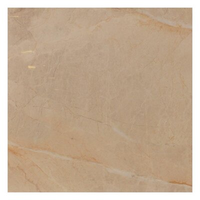 Natura Polished 23.4 x 23.4 Porcelain Field Tile in Beige